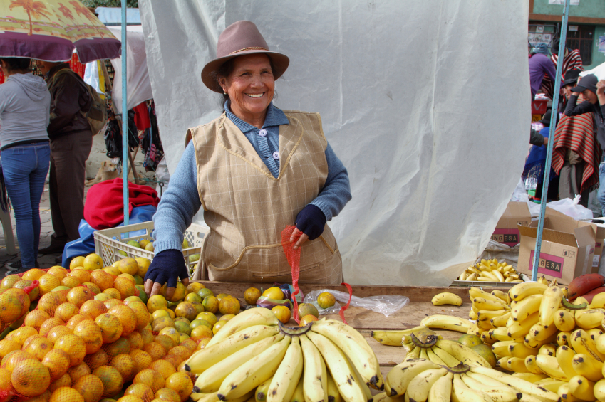 Ecuadorian ethnic woman with indigenous clothes selling fruits in a rural Saturday market in Zumbahua village, Ecuador.
