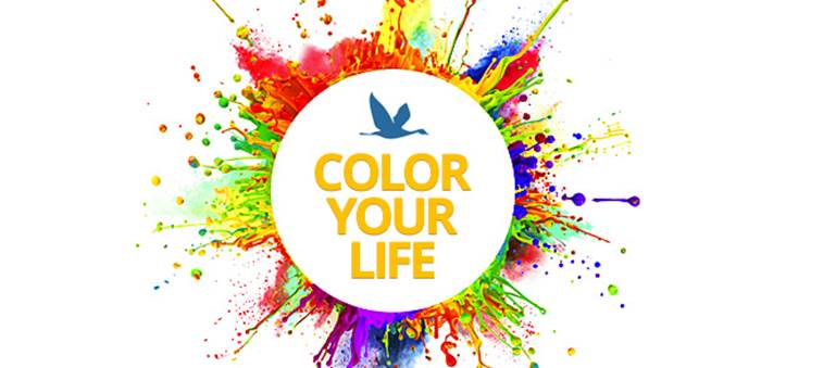 InterNations Expat Blog_Color Your Life_Pic 1