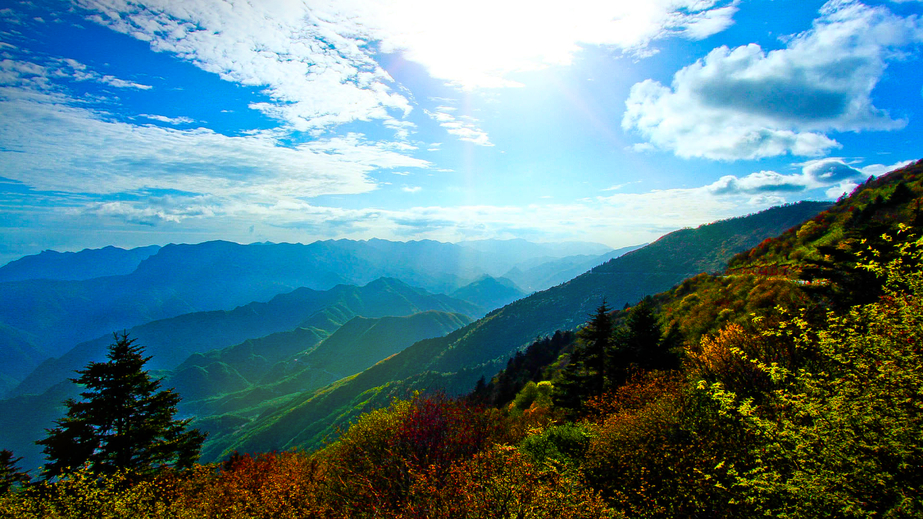 Shennongjia Forest Zone