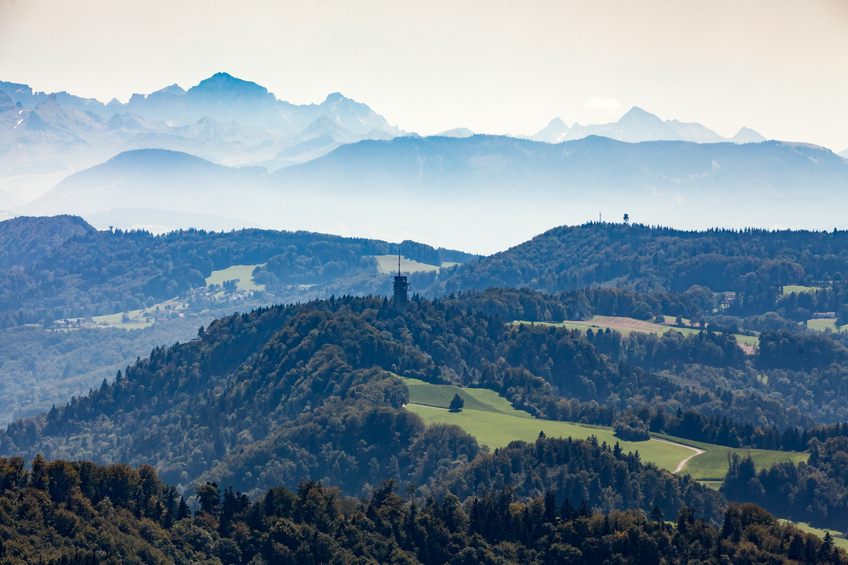 Overlook to the nature from mountain Uetliberg