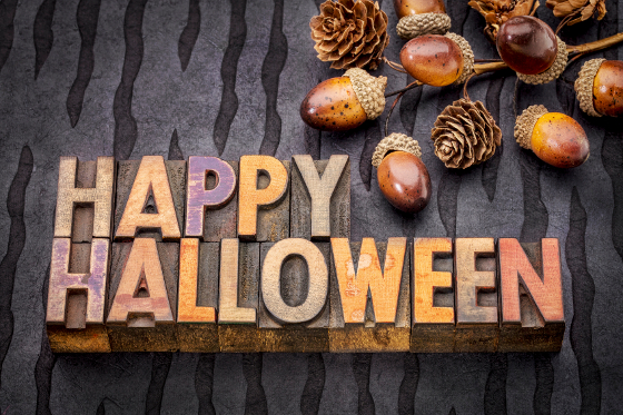 Happy Halloween greeting card - text in vintage grunge wood type printing blocks against black lokta paper with acorns and cones