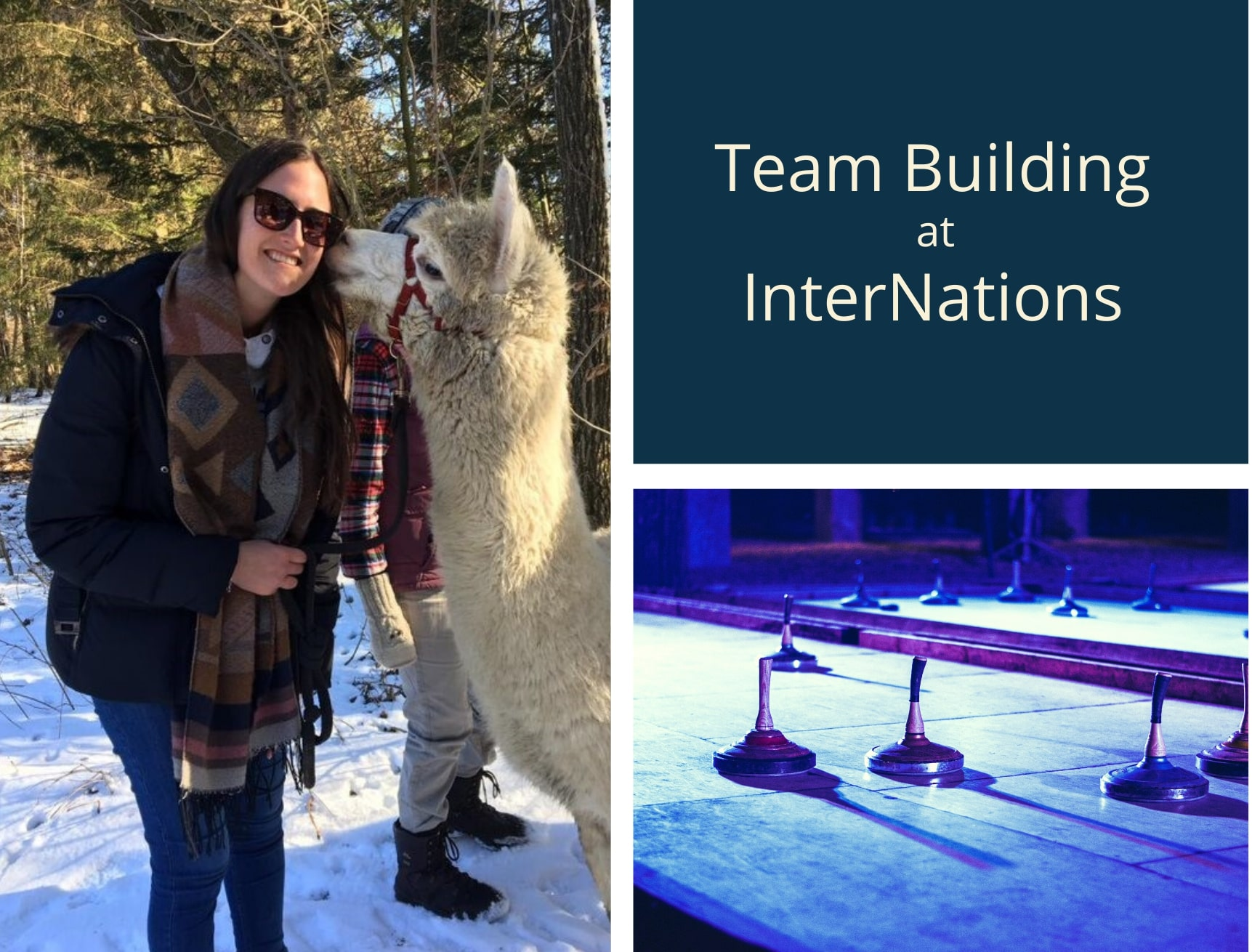 Perks of the Job: Team-Building Activities at InterNations
