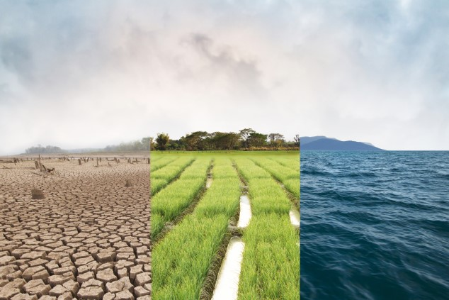 A photo montage of dry and cracked soil on the left, a green field in the middle, and ocean waves on the right